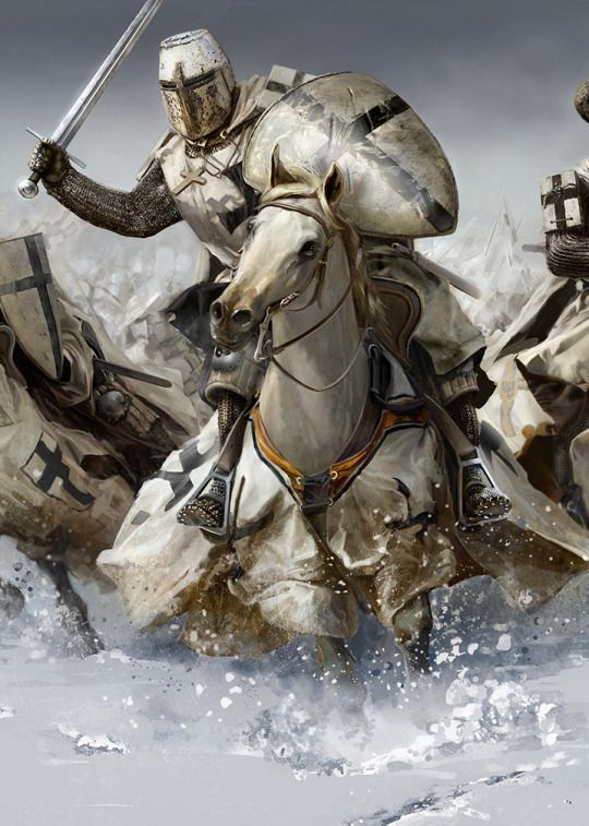 Knights on Horses by Mariusz Kozik_ All I can think is that is not the right horse for a guy in that much armor.jpeg